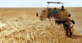 Apoio à medida que beneficia agricultores prejudicados por desastres climáticos