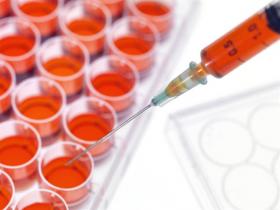 Defesa da ampliação de pesquisas com células-tronco, que podem salvar muitas vidas