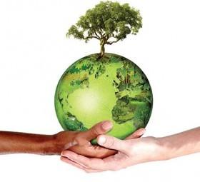 Destaque para a necessidade de se compatibilizar crescimento econômico com preservação ambiental
