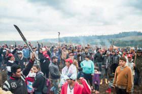 Justiça usa legislação antiterrorismo para prender militantes do MST que invadiram e destruíram fazenda