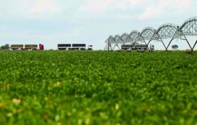 Alvaro Dias diz que governantes não dão atenção devida à agricultura brasileira
