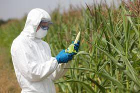 Projeto de Alvaro Dias garante recursos para pesquisa e inovação tecnológica aplicada à agricultura